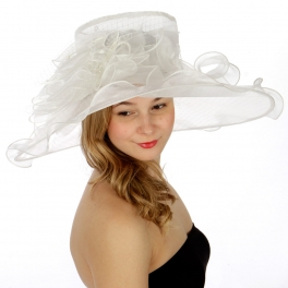 Wholesale BX70 Net covered flower corsage organza dress hat IV