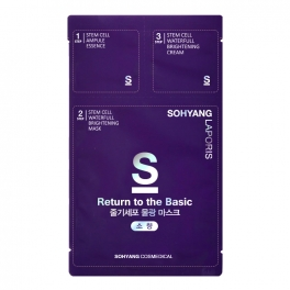 Wholesale 10 pcs Sohyang Return to the Basic Stemcell Sheet Mask