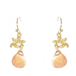 Wholesale WA00 Rhinestone and teardrop stone earrings GCO